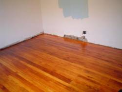 southern yellow pine after